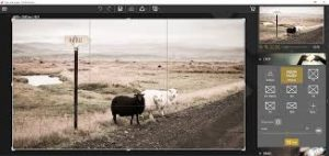 InPixio Photo Clip 8.9 Full Crack & License Key Free Download 2020